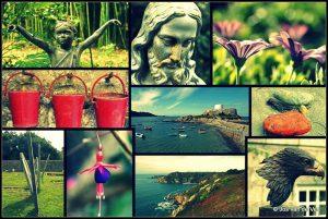 Guernsey uitgelicht