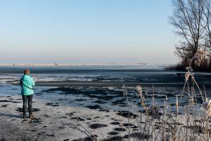 Wormer winter 2017