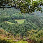Zuid-Wales